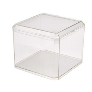 Square Clear Plastic Container with Lid