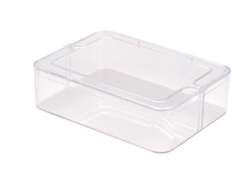 Small Rectangle Clear Plastic Box