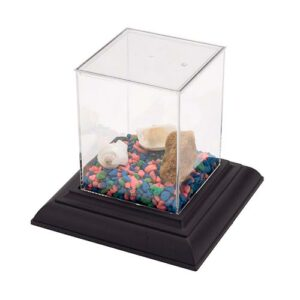 Plastic Aquarium w/ Base