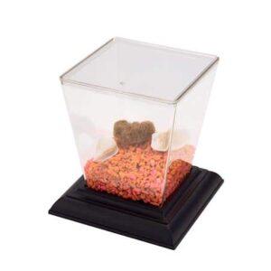 aquariums, terrariums, or insect cages